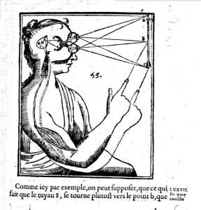 Descartes brain 4b